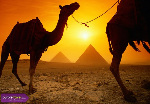 Cheap holidays to egypt 2014 with purpletravel co uk