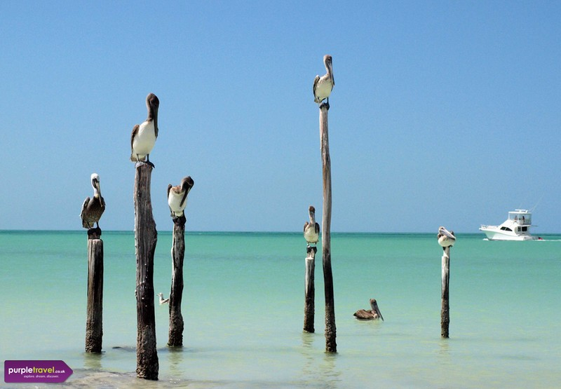 Isla-holbox-cheap-holiday-from-purpletravel