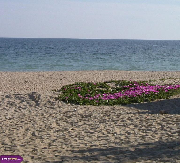 Huelva La Antilla Cheap holidays with PurpleTravel