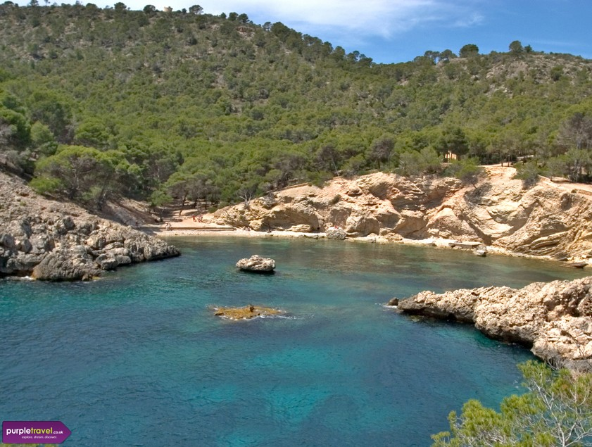 Cheap Holidays To Paguera With Purpletravel Co Uk