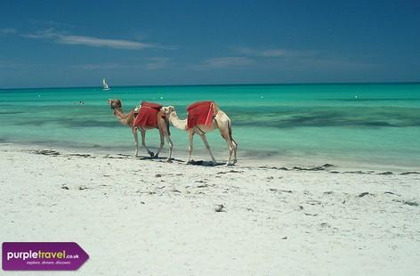 Tunisia Cheap holidays with PurpleTravel
