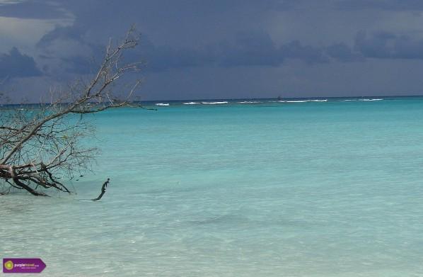 Playa Paraiso Cheap holidays with PurpleTravel