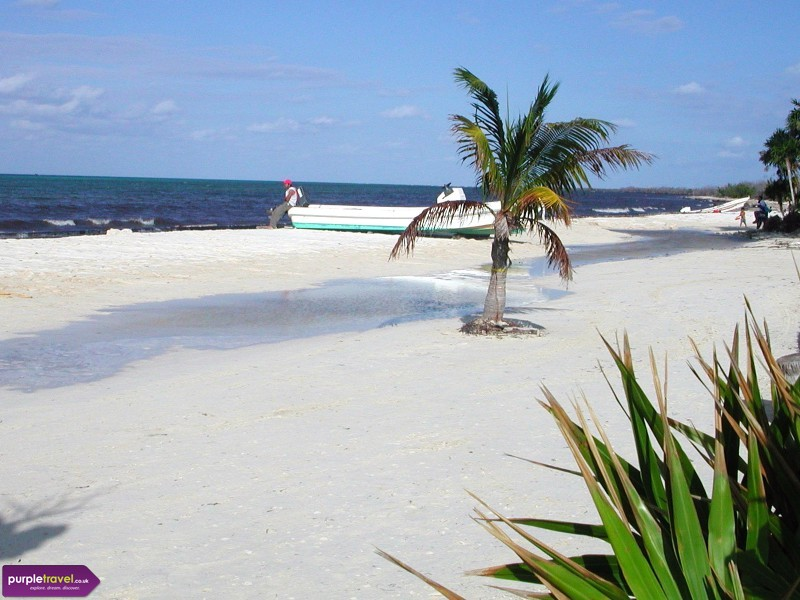 Cozumel Cheap holidays with PurpleTravel