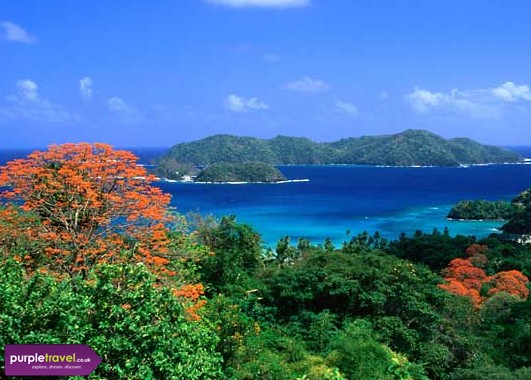Tobago Cheap holidays with PurpleTravel