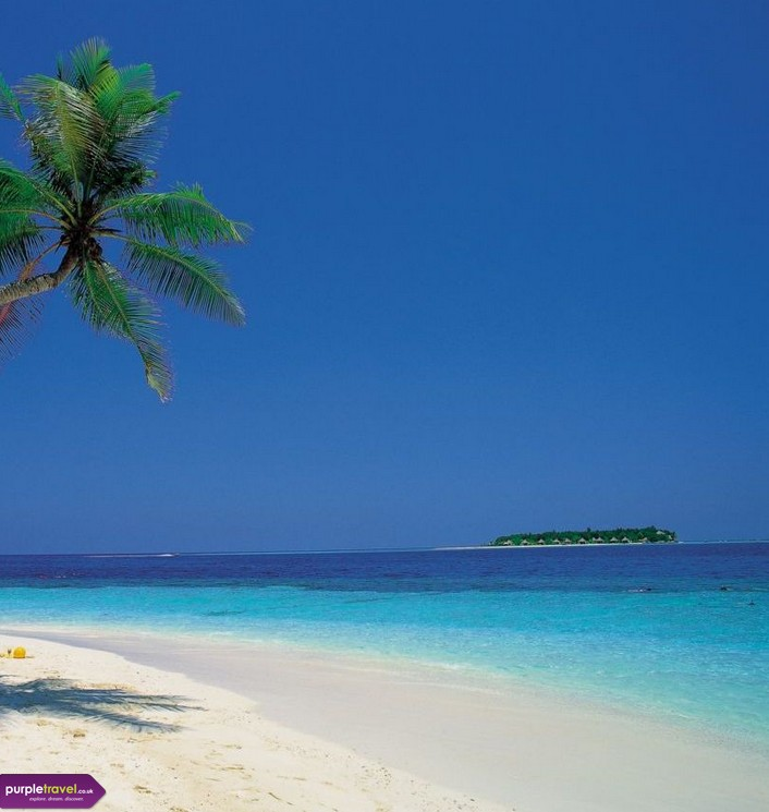 Cheap Holidays To North Goa With Purpletravel Co Uk