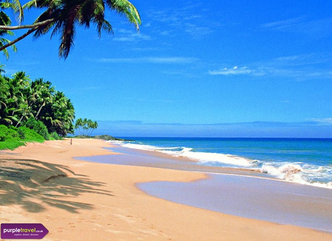 colombo chatrooms The best place to chat about sri-lanka with text and video with webcam (turn on your webcam and let's sri-lanka chat invite your friends.