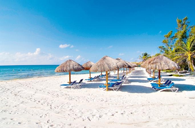 Sandos Caracol Eco , Playa del Carmen | Purple Travel